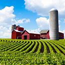WEBIMAGES: farm.jpg
